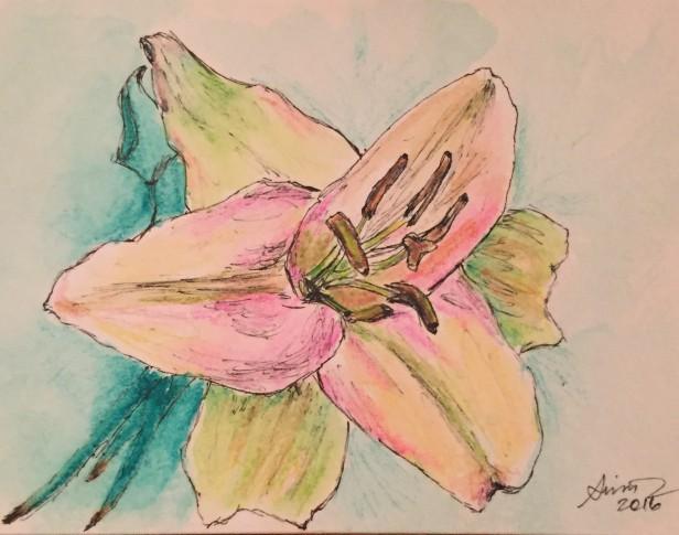 pen & watercolor lily